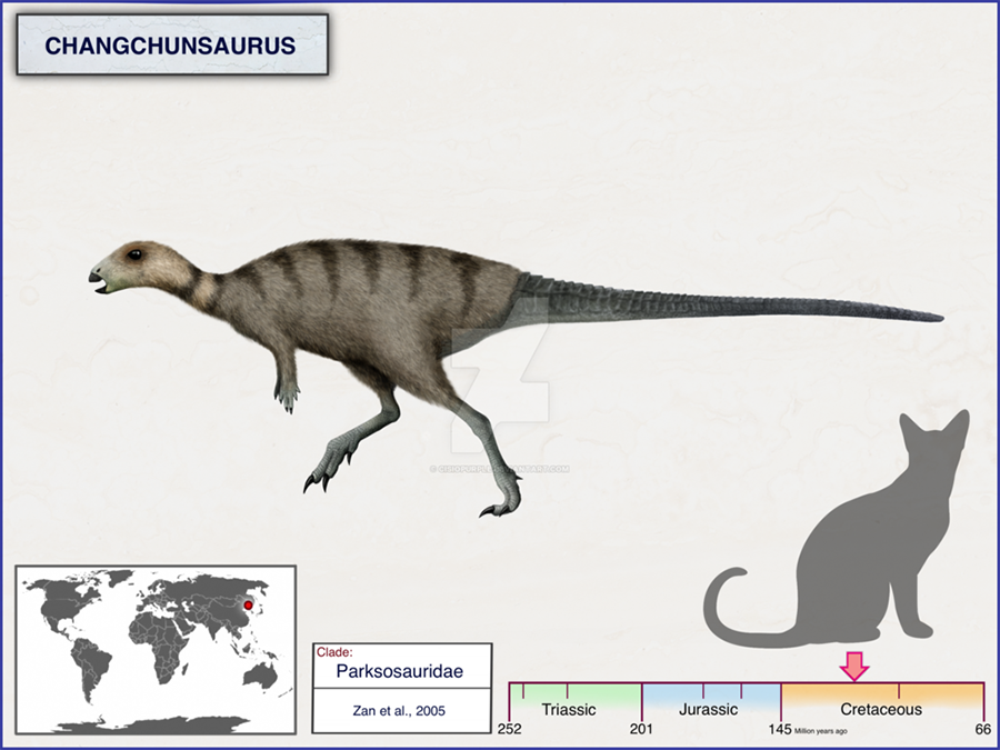 Nandis Blog Page 14 Paleontology World