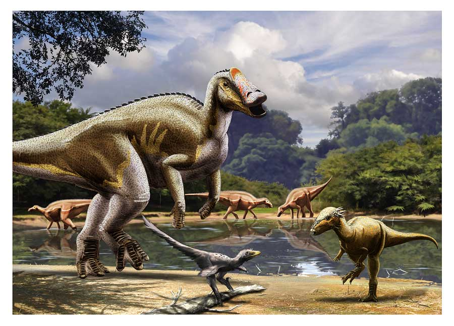 the herbivore duck billed hadrosaurids Gryposaurus, also known as the 'hooked-nose lizard', was a 'duck-billed dinosaur' with a prominent nosethis herbivore occupied north america during the cretaceous period, approximately 80 million years ago.